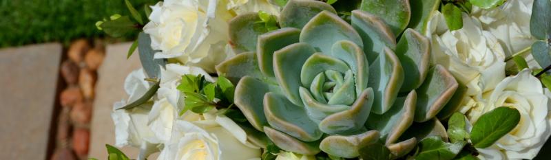Bouquet slider
